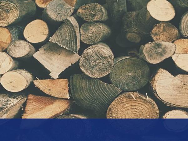Types of Wood.jpg