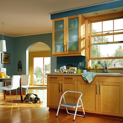 Windows Contemporary Andersen 200 Series 2