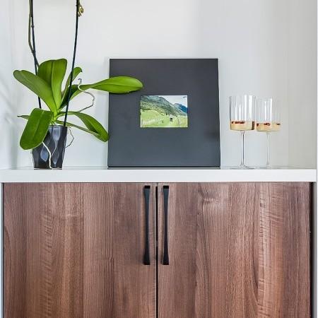 Hardware Cabinet Contemporary Emtek 8